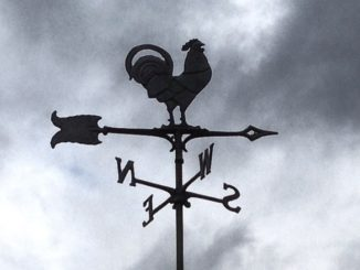chicken weather vane